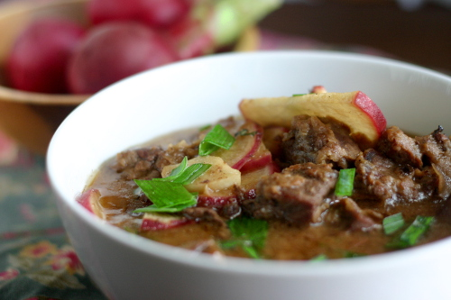 Spicy Asian Beef and Radish Stew