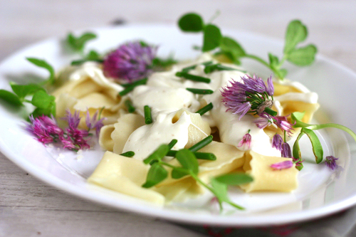Homemade Pappardelle with Parmesan Cream Sauce and Chive Blossoms